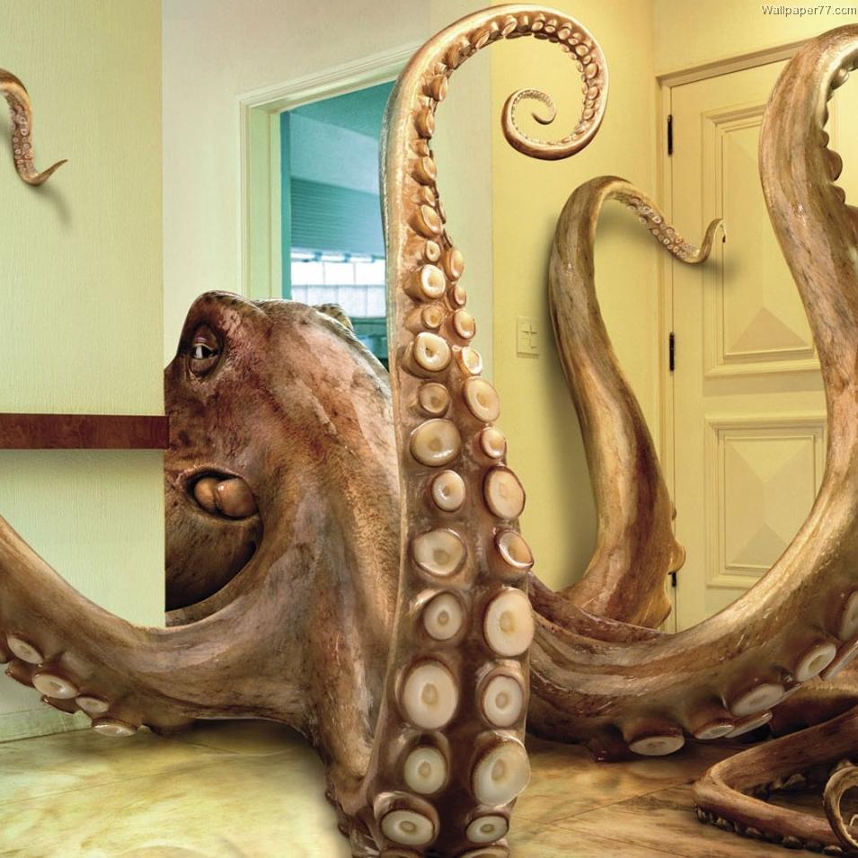 OctopusKing (#2299)